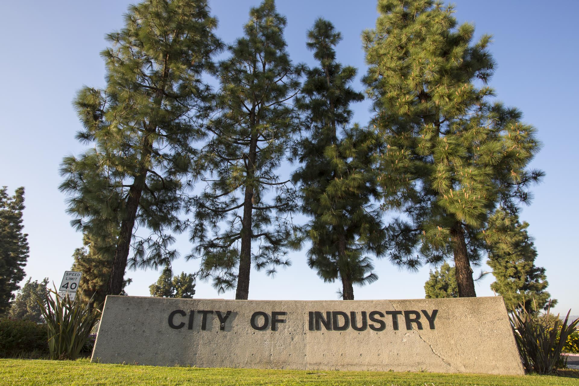 City of Industry Name